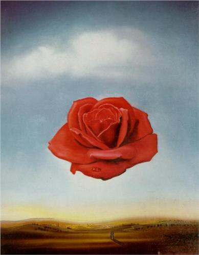 meditative-rose.jpg!Blog (1)