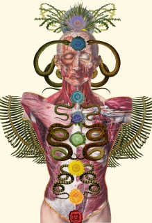 collage-illsutration-scientifique-07
